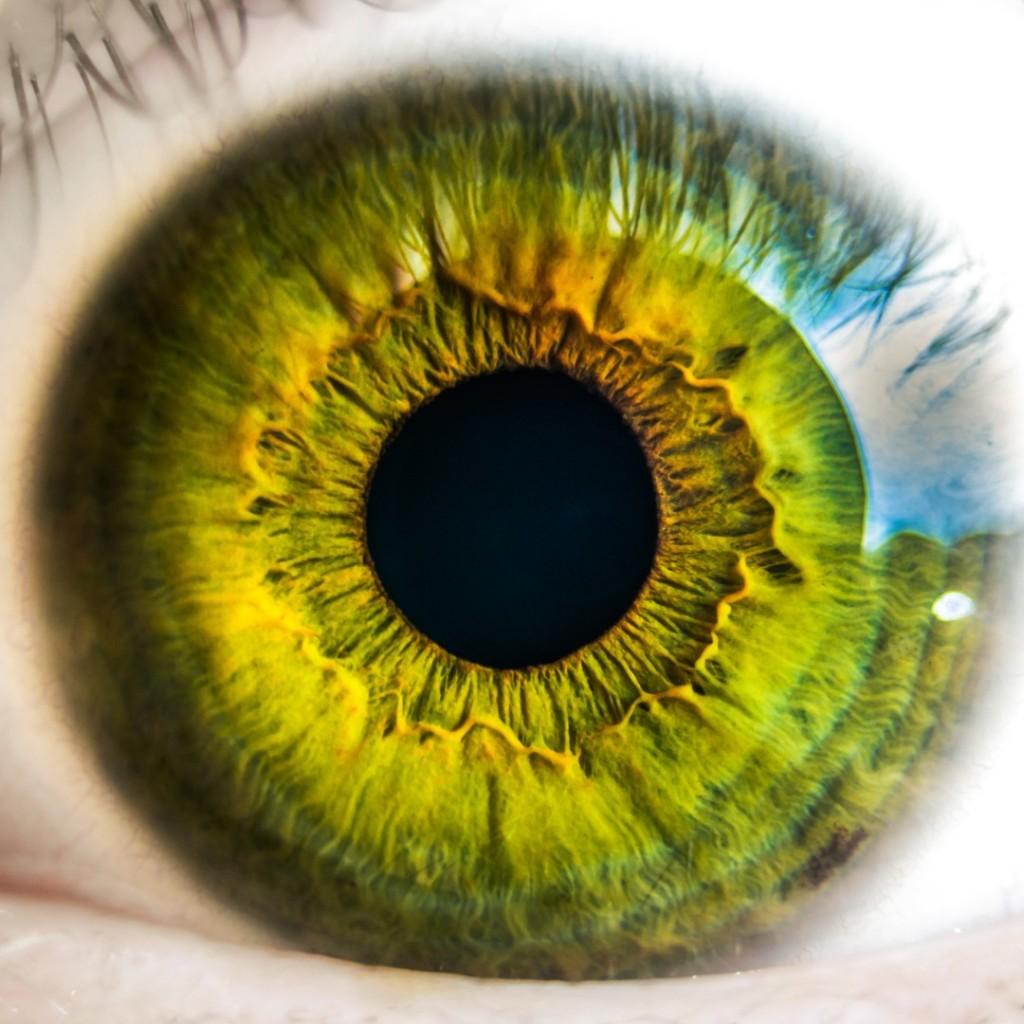 Close up of beautiful green eye.
